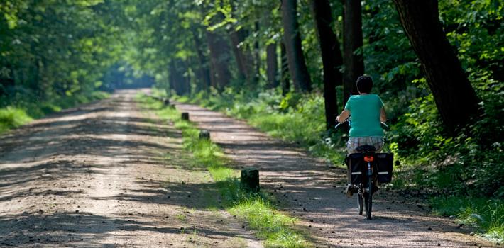Afbeeldingsresultaat voor fietsen in twente
