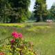Twente, heerlijk wandelen